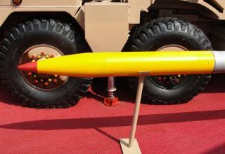 Вид головной части макета неуправляемого реактивного снаряда калибра 214 мм для стрельбы с помощью боевой машины Pinaka (Индия)