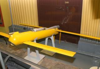 Макет беспилотного летательного аппарата для снаряжения головной части корректируемого реактивного снаряда 9М534 ©В.Г.Митрофанов