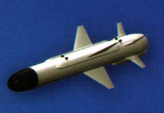 Вид ракеты Х-35УЭ