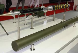 Макет польской зенитной управляемой ракеты Блыскавица (Молния). Фото: Т.Шульц©.