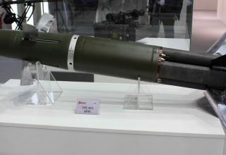 Украинский Квитнык скоро станет польским АПР-155. Макет. Фото: Т.Шульц©.