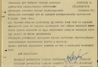 ЦАМО РФ. Ф. 21 ОГМД 77 ГМП. Оп. 16691с. Д. 8. Л. 20.