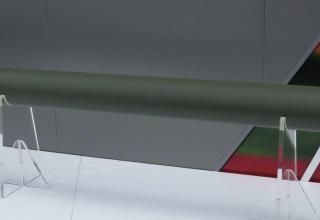 Упрощённый макет ракеты повышенной дальности для комплекса MMP. Фотография: ©Томас Шульц (Польша).