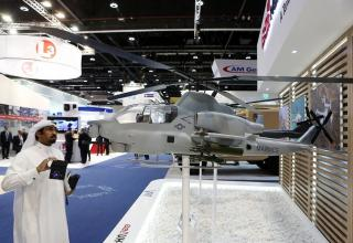 http://www.thenational.ae/business/economy/idex-2017-opens-in-abu-dhabi--in-pictures#20