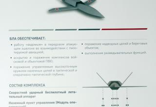 "Скоростной ударный БПЛА ""Гром"" - http://bastion-karpenko.ru/army-2020/"