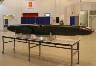 Продемонстрирована авиационная ракета JSM
